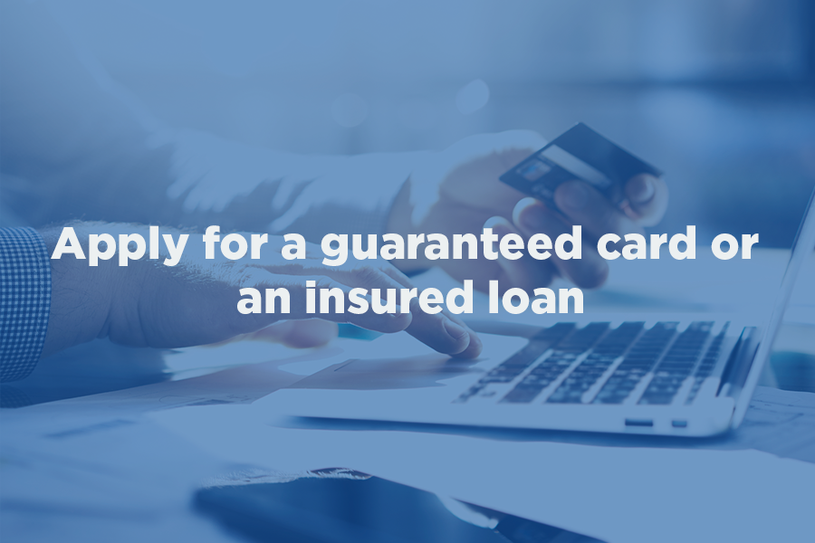 2 guaranteed card or an insured loan