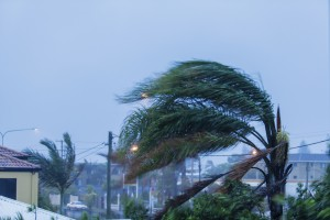Things to do before, during and after a tropical storm or hurricane