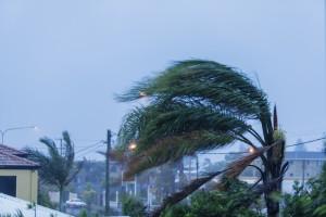 Cosas que hacer antes, durante y después de una tormenta o huracán