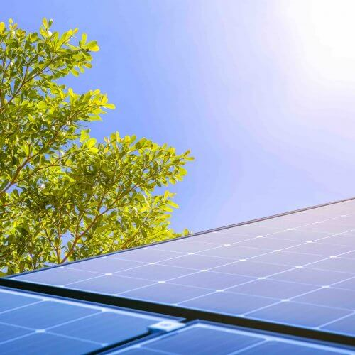 Paneles solares reflejando la luz del sol / Solar panels reflect sparkling light From the sun.